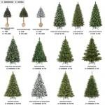 weihnachtsbaeume-zusammen-fairytrees
