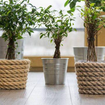 STANKE Naturseile – umweltfreundlich und praktisch