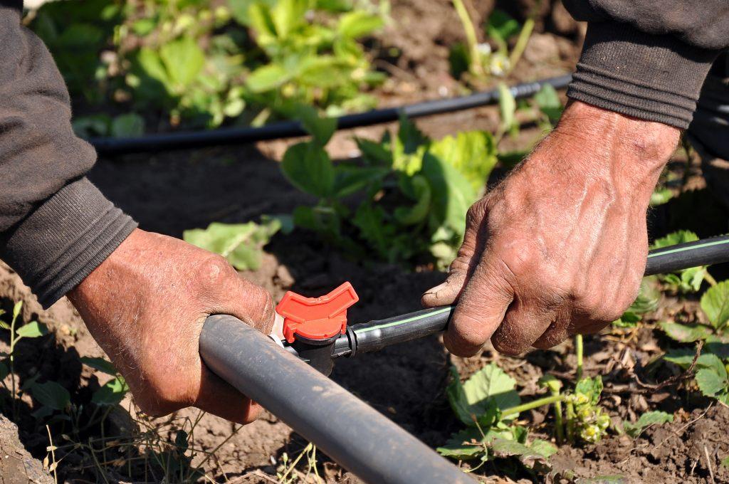 Bewässerungssystem – effektvolle und ökologische Lösung unseres Bewässerungsproblems