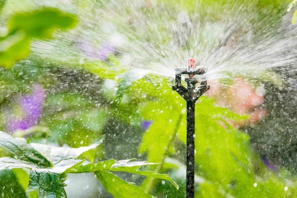 Wie sieht ein System zur Bewässerung – Leitfaden