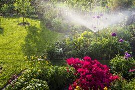 Bewässerungssystem – wie schütze ich die Umwelt und meinen Geldbeutel