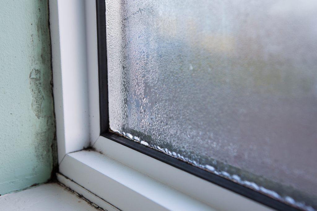 undichtes Fenster und Feuchtigkeit