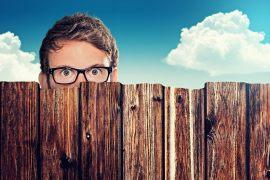 Einfacher und preiswerter Sichtschutz – Schluss mit den lästigen Nachbarschaft Blicken