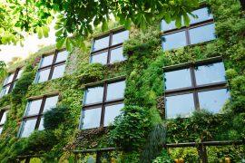 Gebrauchsanweisung eines Öko-Freaks: Stadtleben und Umweltschutz