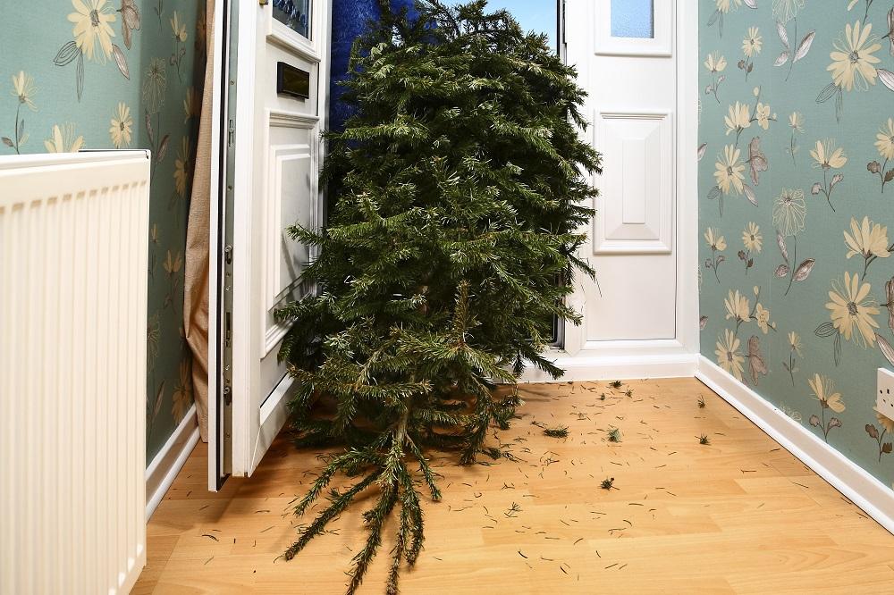 weihnachtsbaum-christbaum