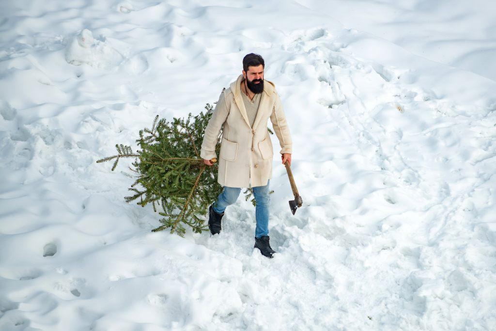 baumfaeller-weihnachtsbaum-jagd