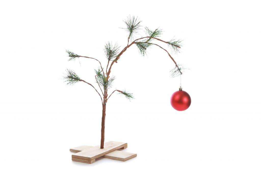 weihnachtsbaum-ohne-naedeln-feng-shui