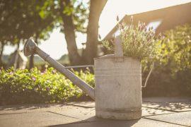 Bewässerungssystem als Ersatz einer Gießkanne