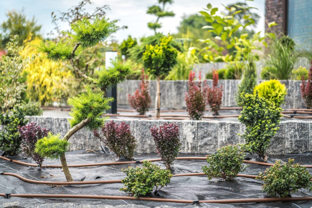 bewässerungssystem-tropfbewaesserung-im-garten