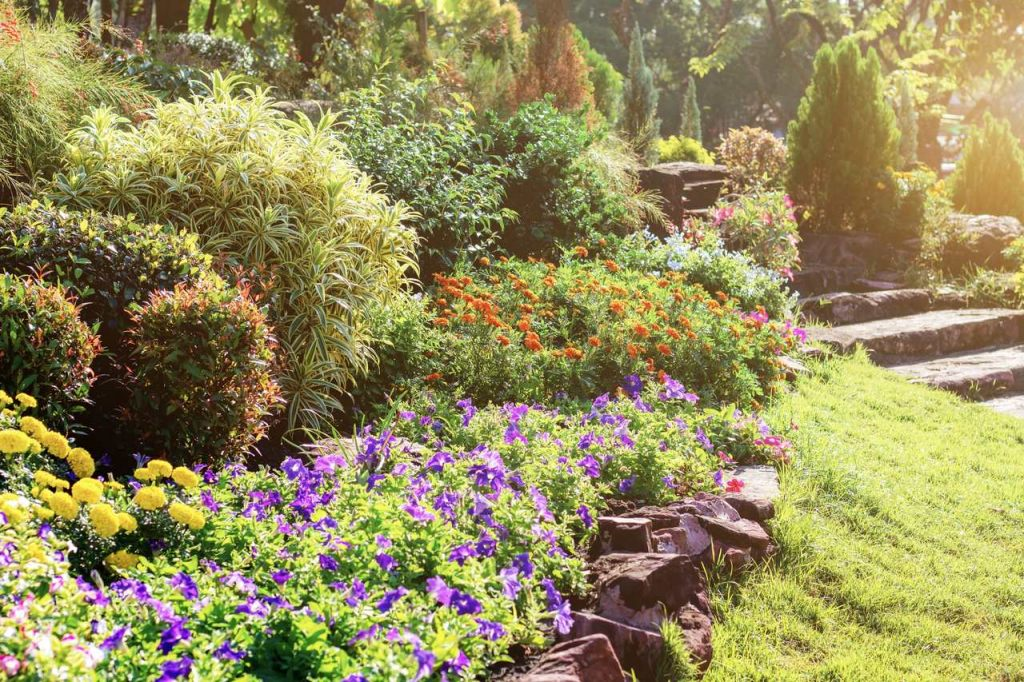 garten-anforderung-bewässerungssystem-tropfbewaesserung