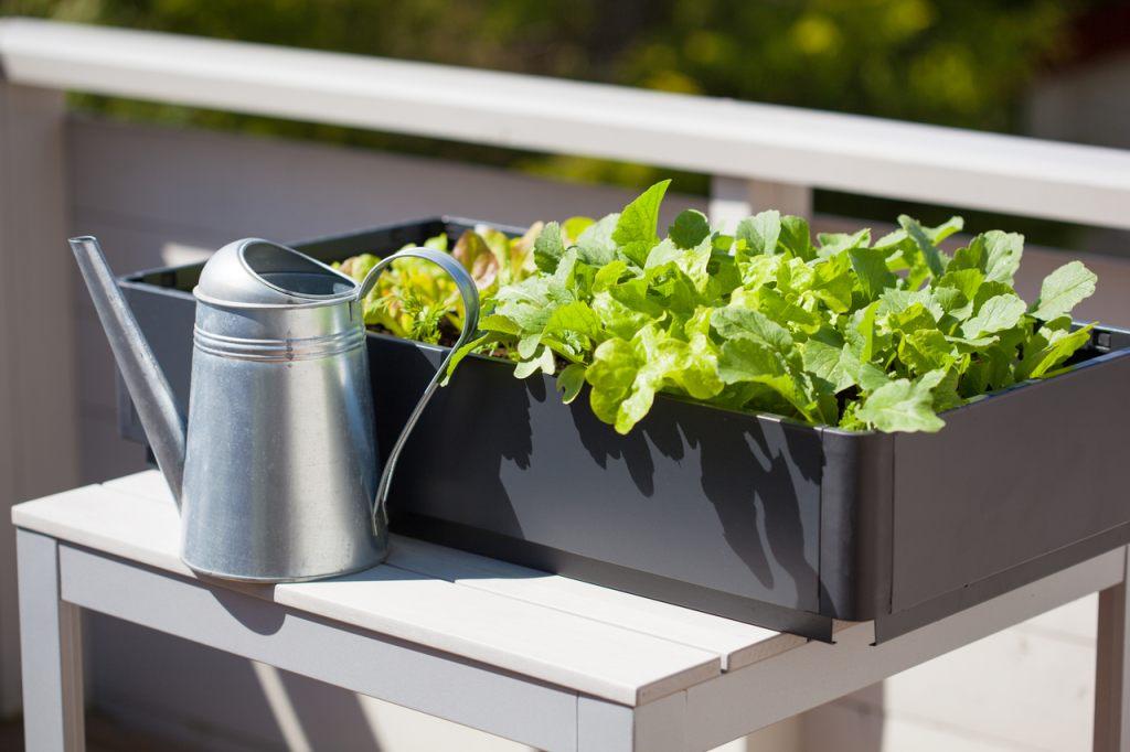 topfpflanzen-bewaessern-system