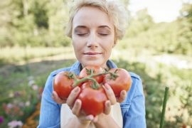 Bewässerung von Tomaten – alles was man über das Gießen wissen sollte