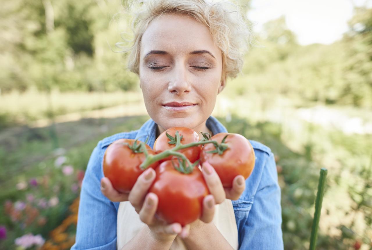 tomaten-aus-eigenem-garten