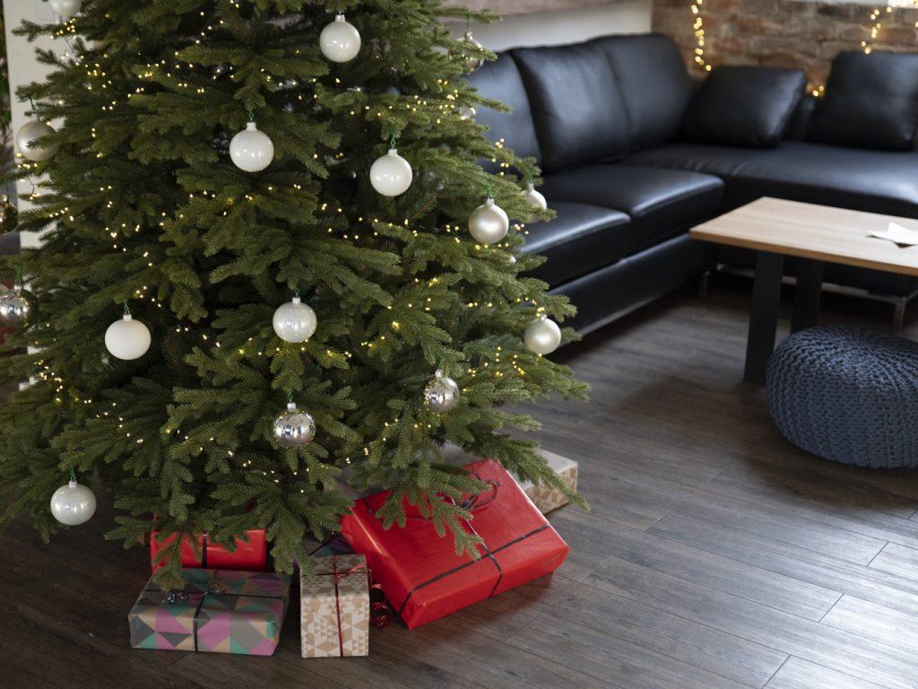 dichter-weihnachtsbaum-bayrische-tanne-von-fairytrees