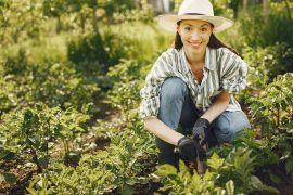 Gartenarbeit im Frühling – die besten Tipps, wie Euer Garten frühlingsfit wird