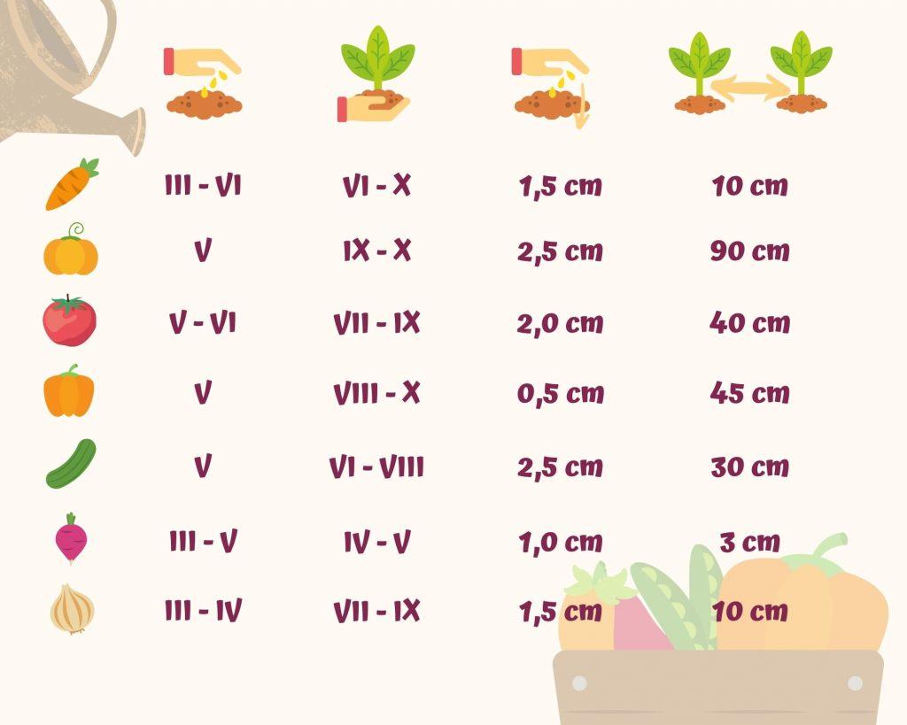 gartenkalender-wann-pflanzen