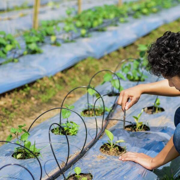Bewässerungssystem Micro-Drip-System Tropfbewässerung Bewässerungsset 5