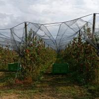 Vorschau: Schattiernetz inkl. Befestigungsmaterial, Schwarz, Zaunblende, Windschutznetz HZB-02
